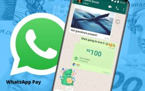 Entenda Os Impactos Do Whatsapp Pay Para O Seu Negocio Notícias E Artigos Contábeis - Conexão Contábil