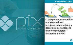 O Que Pequenos E Medios Empreendedores Precisam Saber Sobre Os Desafios E As Vantagens Envolvendo Gestao Financeira E O Pix  - Conexão Contábil