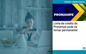Linha De Credito Do Pronampe Pode Se Tornar Permanente - Conexão Contábil