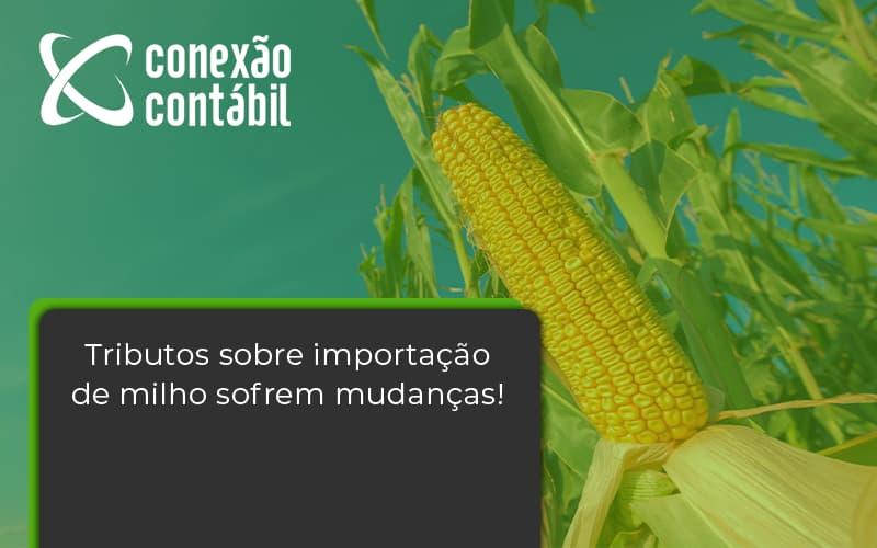 Tributos Sobre Importação De Milho Sofrem Mudanças! Conexao Contabil - Conexão Contábil