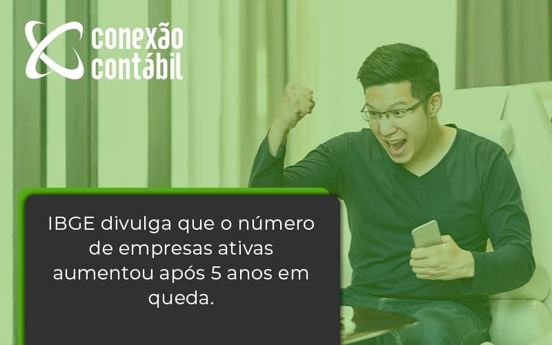 Ibge Divulga Que Numero De Empresa Ativas Aumentou Conexao Contabil - Conexão Contábil
